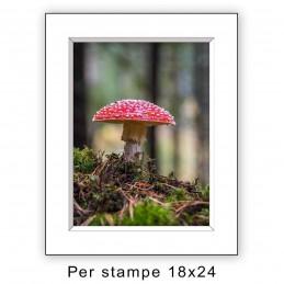 Passep. 24x30 per stampe 18x24 Bianco (sp. 2,8 mm)