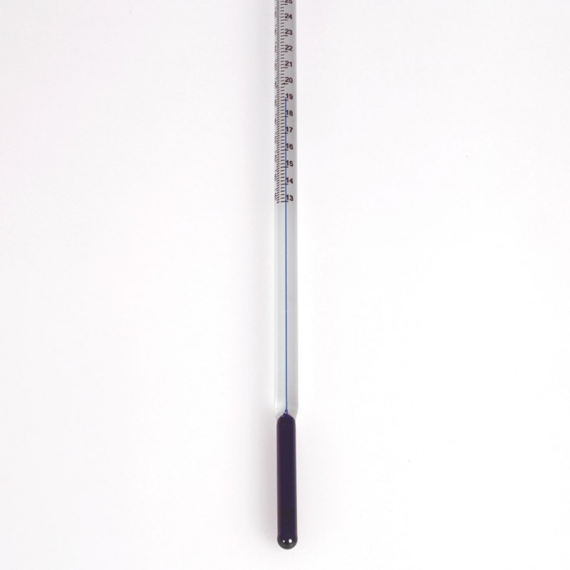 PATERSON Termometro per processi Banco e Nero
