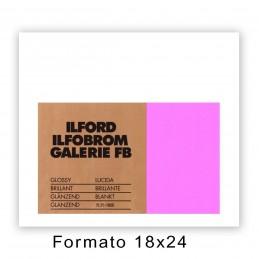 ILFORD GALERIE 17,8x24/100 2.1K Lucida