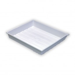 PATERSON Bacinella bianca 50x60